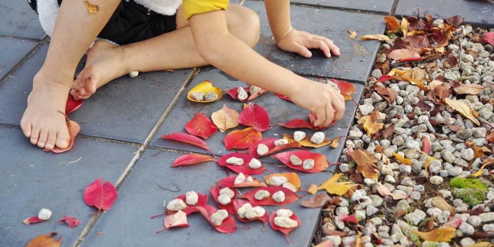 Children,Playing,Fallen,Leaves